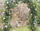 Wild wedding archway with British foliage