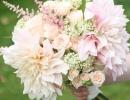 Dahlia blush bouquet