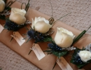 White and blue buttonholes