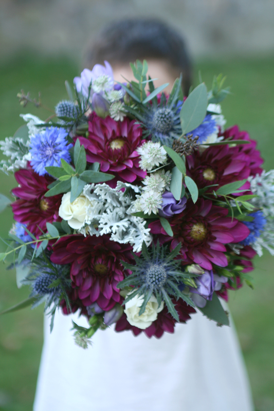 Bouquet of dahlia in burgundy and blue