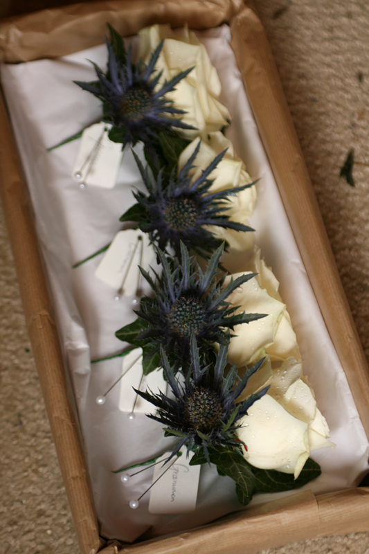 Rose and thistle buttonholes East Lothian