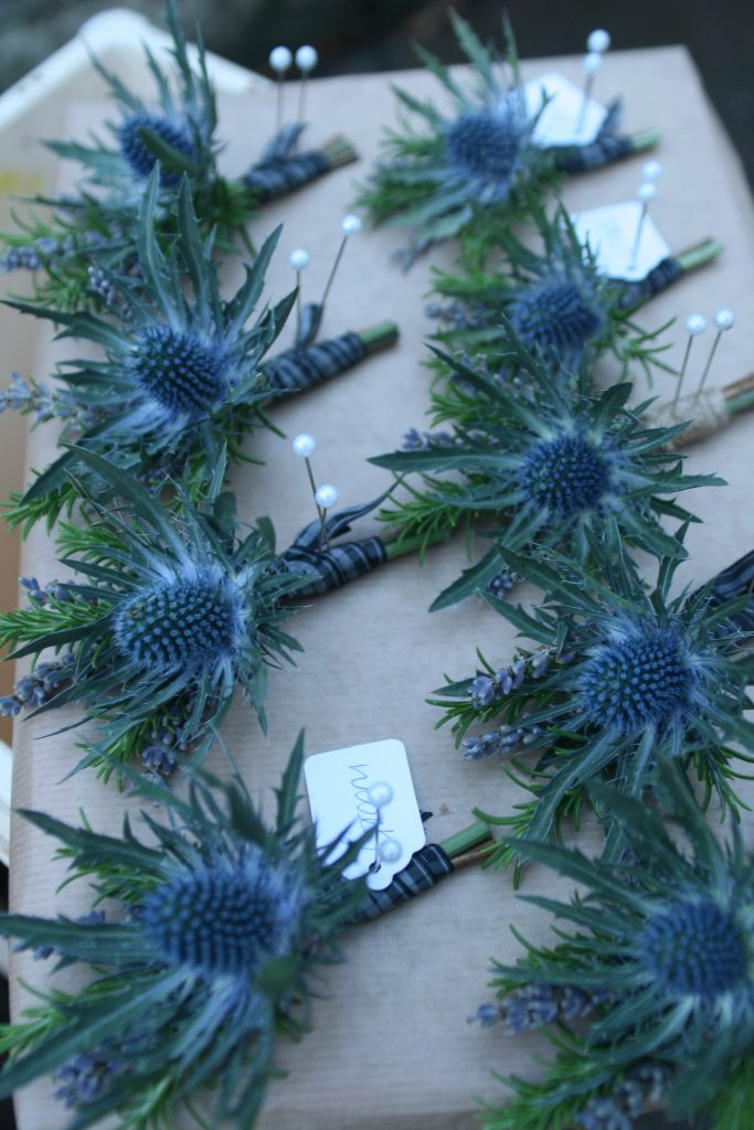 Gents Buttonholes of thistles, rosemary and lavendar with tartan ribbon.